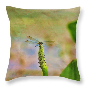 Spring Damsel Throw Pillow by Deborah Benoit