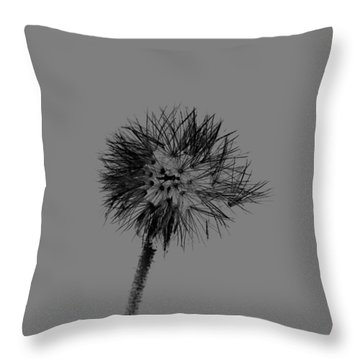 Spring Dandelion Throw Pillow by Tommytechno Sweden