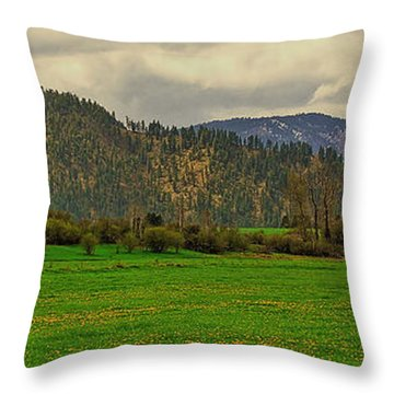 Spring Dandylions Throw Pillow