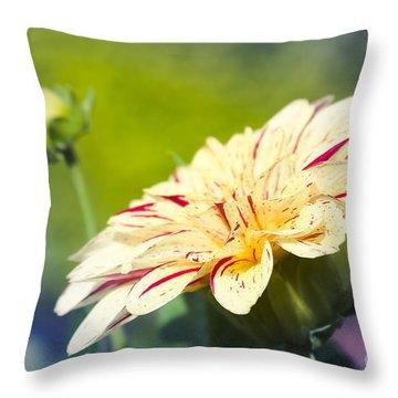 Spring Dream Jewel Tones Throw Pillow