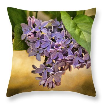 Spring Dreaming Throw Pillow by Peggy Hughes