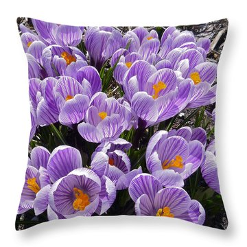 Spring Faces Throw Pillow