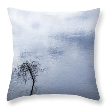 Spring Flood In Georgia Throw Pillow