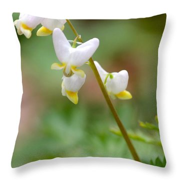 Spring Flower Throw Pillow by Tiffany Erdman