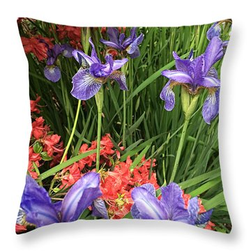 Spring Flowers 1 Throw Pillow