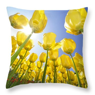 Spring Flowers 5 Throw Pillow