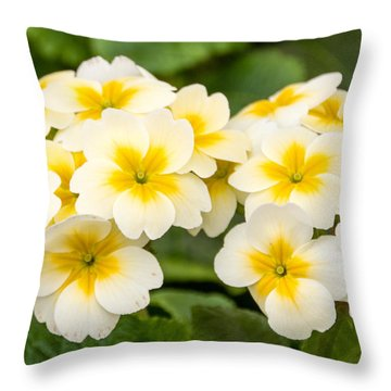 Spring Flowers Throw Pillow by Cathy Donohoue
