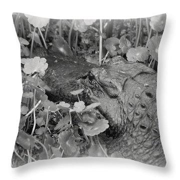Spring Gator B W Throw Pillow