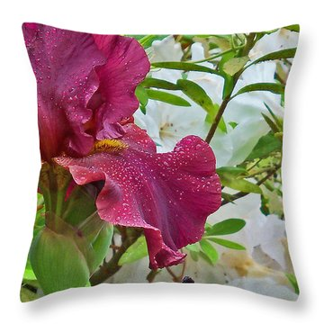 Spring Glow Throw Pillow by Larry Bishop