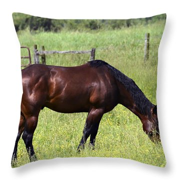 Spring Grazing Throw Pillow by Susan Leggett