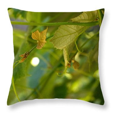 Spring Green Grape Vines Throw Pillow by Adria Trail