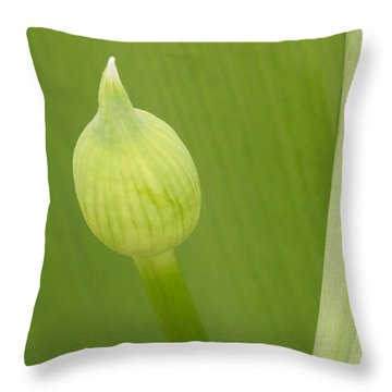 Throw Pillow featuring the photograph Spring Green by Inge Riis McDonald