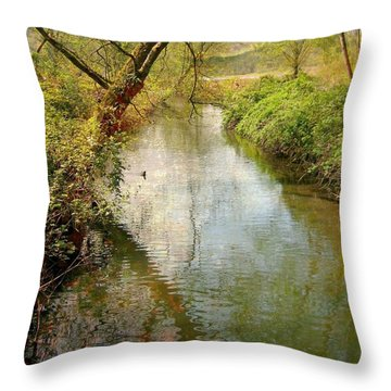 Spring Happening Throw Pillow by Shirley Sirois