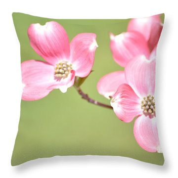 Spring Harbinger Throw Pillow