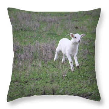 Spring Has Sprung Throw Pillow by Donna  Smith