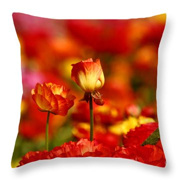 Carlsbad Spring Throw Pillow