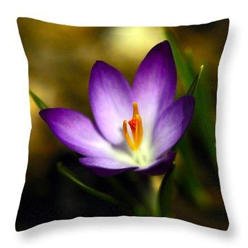 Spring Has Sprung Throw Pillow by Karol Livote