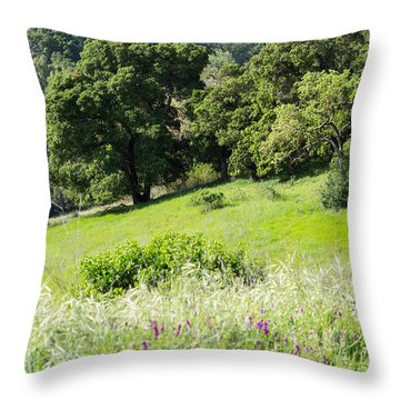 Throw Pillow featuring the photograph Spring Hike by Suzanne Luft