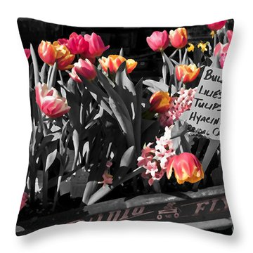 Spring In A Wagon Throw Pillow by Sandi Mikuse