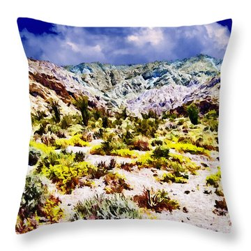 Spring In Anza Borrega  Throw Pillow by Bob and Nadine Johnston