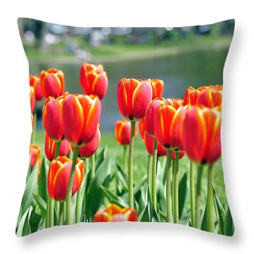 Spring In Boston Throw Pillow