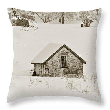 Spring In Boyertown Throw Pillow by Trish Tritz