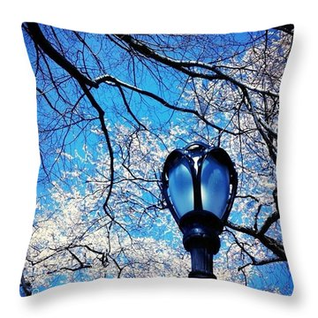 Spring In Central Park New York Throw Pillow