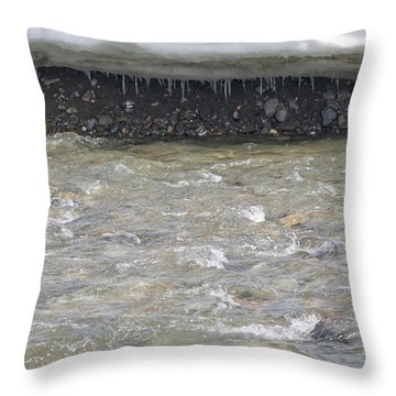Spring In Denali Park Throw Pillow by Tara Lynn