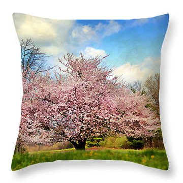 Spring In Kentucky Throw Pillow by Darren Fisher