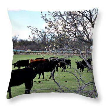 Spring In The Hay Meadow Throw Pillow