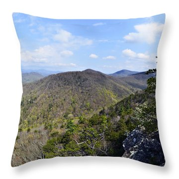Spring In The Mountains Throw Pillow by Susan Leggett