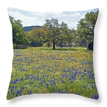 Spring In The Texas Hill Country Throw Pillow by Gary Holmes