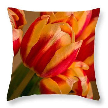 Spring Indoors Throw Pillow