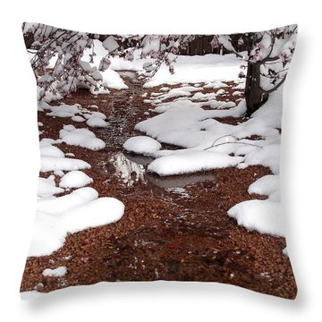 Throw Pillow featuring the photograph Spring Into Winter by Kerri Mortenson