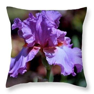 Spring Iris Bloom Throw Pillow