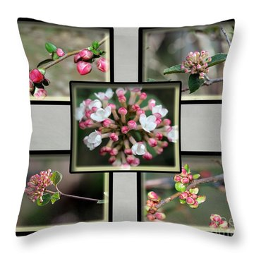 Spring Is Here - Gray Throw Pillow
