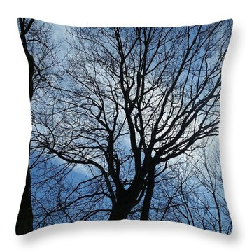 Spring Is In The New England Air Throw Pillow