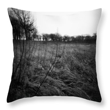 Spring Is Near Holga Photography Throw Pillow