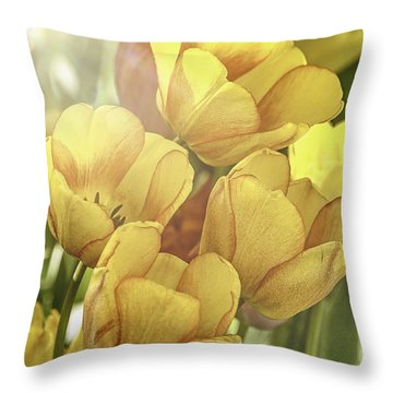 Spring Is So Welcome Throw Pillow