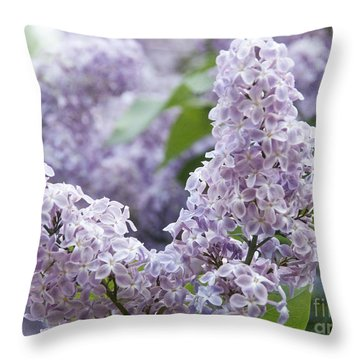 Spring Lilacs In Bloom Throw Pillow