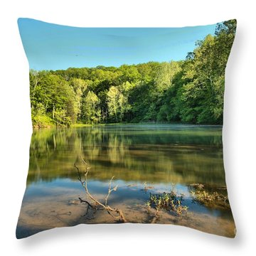 Spring Mill Lake Throw Pillow by Adam Jewell