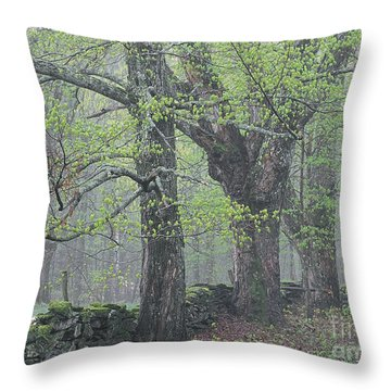 Throw Pillow featuring the photograph Spring Mist by Alan L Graham