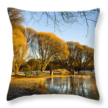 Spring Morning In The Park Throw Pillow