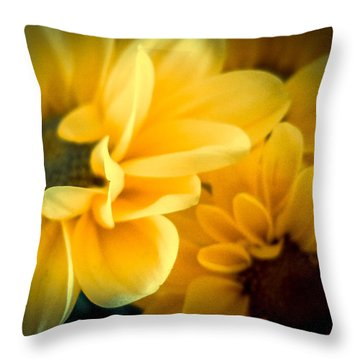 Spring Mums Throw Pillow