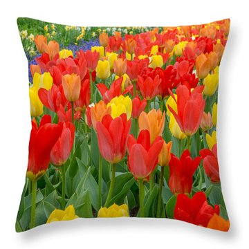 Spring Of Glory Throw Pillow