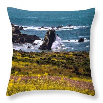 Spring On The California Coast By Denise Dube Throw Pillow