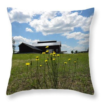 Spring On The Old Farm Throw Pillow