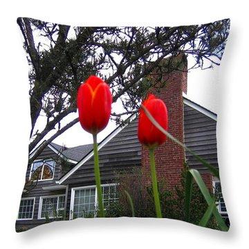 Spring On The Oregon Coast Throw Pillow by Will Borden
