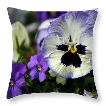 Spring Pansy Flower Throw Pillow by Ed  Riche