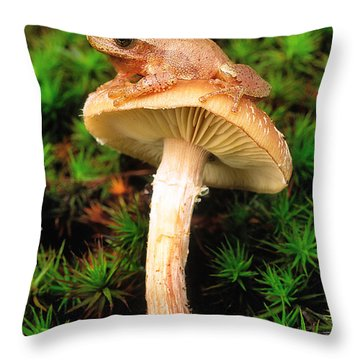 Spring Peeper On Mushroom Throw Pillow by Gary Meszaros